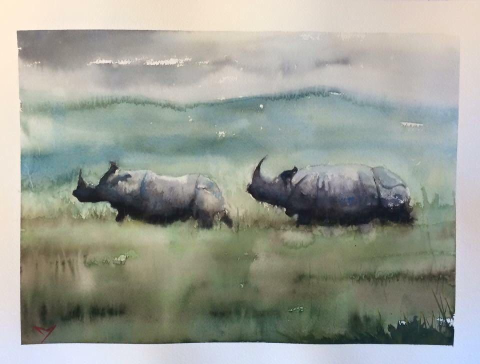 Black Rhino- Kaziranga - Watercolor