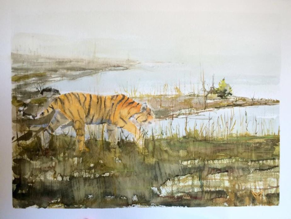 Bengal Tiger - Watercolor