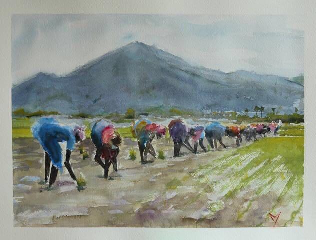Paddy planting - Tamilnadu - Watercolor